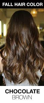 hair colour to suit a 40 year old best 25 perfect hair color ideas on pinterest which hair colour
