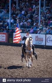 Cowboys Flag Horse Holding American Flag Stockfotos U0026 Horse Holding American