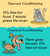 classical conditioning vs operant conditioning behaviorisminet