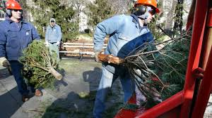 oakland county helps u0027undeck the halls u0027 with christmas tree