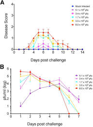 Challenge And Herpes Protection From Herpes Disease Seroconversion And Latent