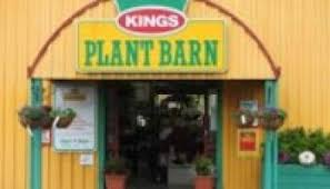 Kings Plant Barn Remuera Where To Buy Waimea Nurseries Products