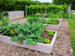 Raised Vegetable Garden Ideas Raised Vegetable Garden Ideas Backyard Photo Landscaping
