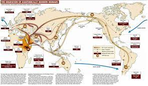 Waterfowl Migration Map Image Gallery Migration Map