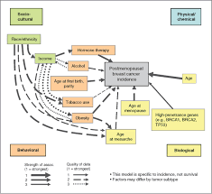 a multilevel model of postmenopausal breast cancer incidence