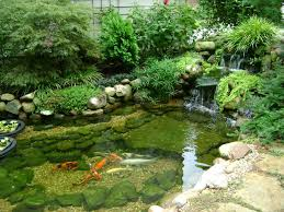 Backyard Pond Landscaping Ideas Koi Pond Landscaping Ideas 2413