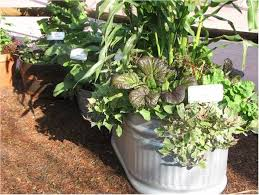 Garden Containers Large - 23 best galvanized gardens images on pinterest trough planters