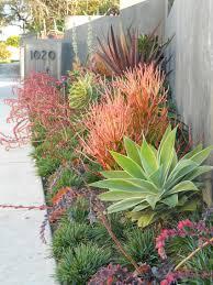 Drought Tolerant Landscaping Ideas Garden Design Landscape Grasses Garden Plants Garden Design