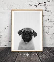 pug print puppy dog wall art black and white photo