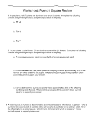 microsoft word worksheet punnett square review 2010 doc