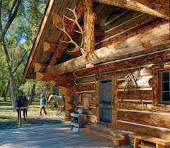 Small Cabin Home 35 Best Rustic Cabins Images On Pinterest Rustic Cabins Log