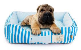 Ikea Cuccia Cane by Cose Indispensabili Per Un Cucciolo Di Cane In Casa Animali Pucciosi