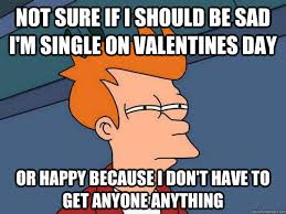 Funny Single Valentines Day Memes - 16 memes that all single on valentine s day will relate to page