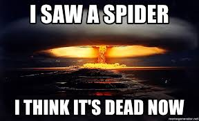 I Saw A Spider Meme - i saw a spider i think it s dead now nukesss meme generator