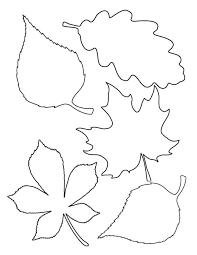 leaf drawing template eliolera com