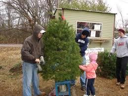 Christmas Tree Farm Va - the goddard christmas tree farm in norman is a choose and cut