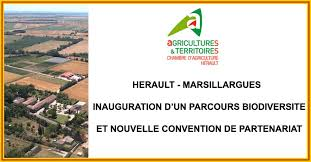 chambre agriculture herault actualités herault marsillargues inauguration d un parcours
