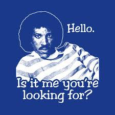 Hello Is It Me You Re Looking For Meme - hello is it me you re looking for t shirt from five finger tees