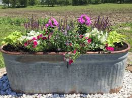 Galvanized Trough Planter by 195 Best Potted Flowers Images On Pinterest Gardening Plants