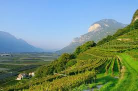 Getting There U0026 Around Italian by Italy Booking Guide Food And Wine Holidays