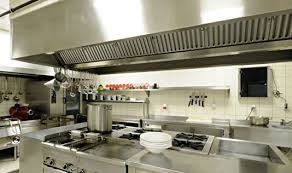 hotte cuisine pro extraction cuisine restaurant image of oregano spagyric