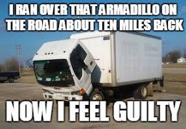 Armadillo Meme - okay truck meme imgflip