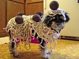 Funny Dog Costumes Halloween 18 Dog Costumes Failed Hard Won Barkpost