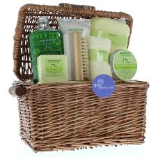 Bath Gift Basket Body Care Gift Set Healthy Holiday Family Gift Baskets Healing