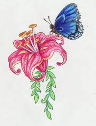 butterfly and flower designs drawing
