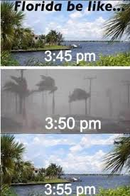 Florida Rain Meme - florida be like trash man s sacred lair pinterest