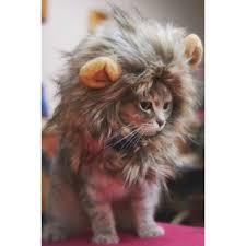 Dog Halloween Costume Lion Mane Pet Hat Costume Lion Mane Wig Cat Halloween Dress Ears