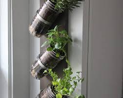 Indoor Herbal Garden Indoor Herb Garden Etsy