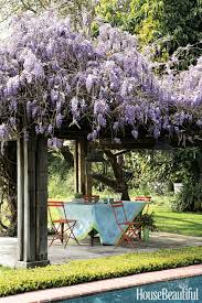 wisteria home decor 30 spring garden ideas pictures of beautiful spring gardens