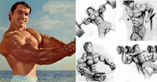 arnold s best 4 exercise chest workout