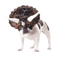 dog halloween party ideas animal planet triceratops dog costume dog animal and fur babies