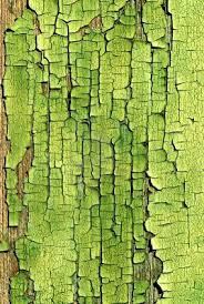 42 best green images on pinterest colors green texture and