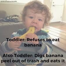 Toddler Meme - toddler eating habits meme a beautifully burdened life