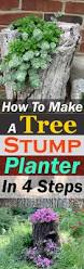 How To Make A Moss Wall by How To Create A Tree Stump Planter Tree Stump Fairy Doors And
