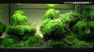 japanese aquascape 100 aquascape aquarium designs most beautiful aquascapes