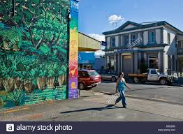 Forest Mural by Forest Mural With Kiwi And Other Birds Bank Of New Zealand