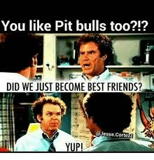 Did We Just Become Best Friends Meme - you like pit bulls too did we just become best friends cortez