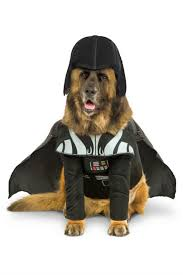 Halloween Dogs Costumes 53 Funny Dog Halloween Costumes Cute Ideas Pet Costumes