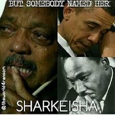 Sharkeisha Meme - lmao sharkeisha invades the internet mina saywhat