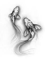 best 25 fish sketch ideas on pinterest koi art koi fish