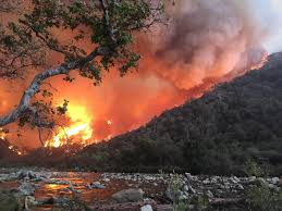 Wildfire Clearlake Ca by Scope Of Devastation Clearer As California Wildfire Evacuees