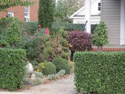 Euonymus Topiary Gardening And Gardens Topiaries In The Landscape