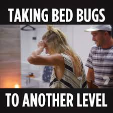 Bed Bug Meme - channel 7 goodnight don t let the bed bugs bite