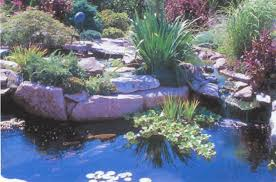 water features fountains and water features