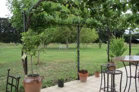 chambre d hote remy de provence au jardin du papet maison d hôtes à mollégès piscine alpilles