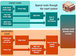 Queen S Bench Division Case Law Appeals And Precedent